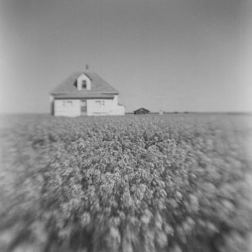 Near Leader, Saskatchewan