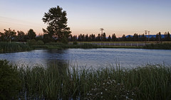 Ranch Pond at Sunset