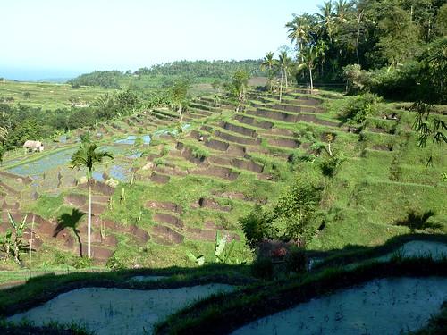 Bali-Tirtagangga (88)