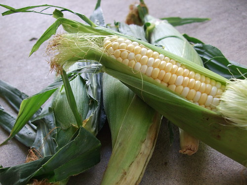 Fresh Local Corn