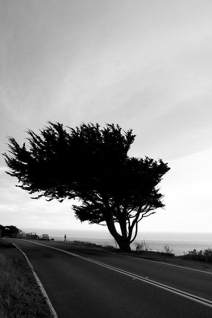 Highway CA-1