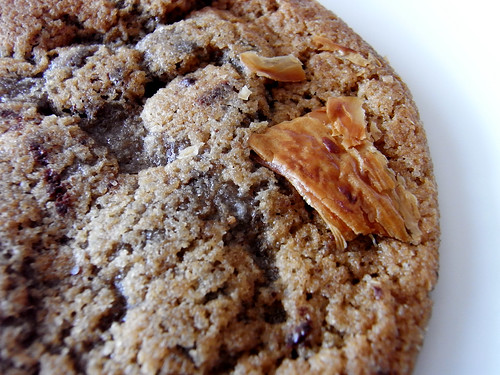08-05 chocolate chip cookie