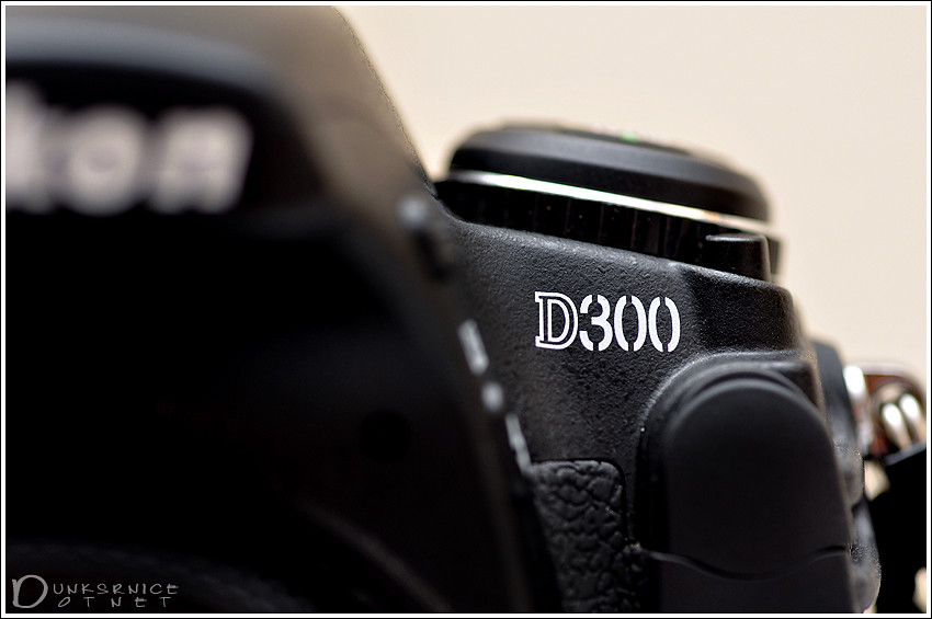 D300.