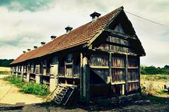 Old Farmhouse (samtrav) Tags: flower detail building up landscape fly nikon close fields editing d90