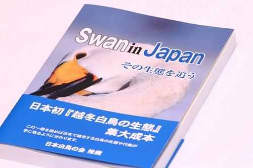 swan in japan