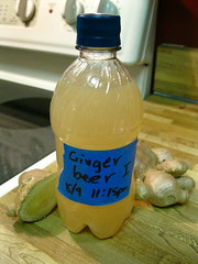 Ginger Beer I