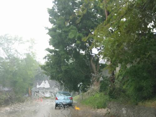 100807. summer rain.