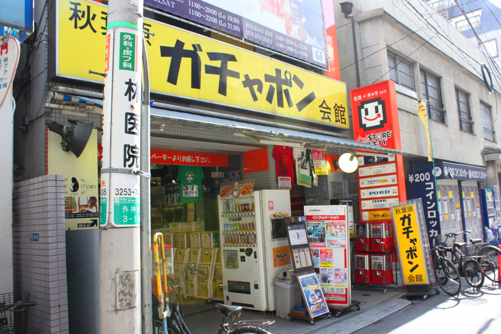 The art of the walk for gastronome in Kanda (66)
