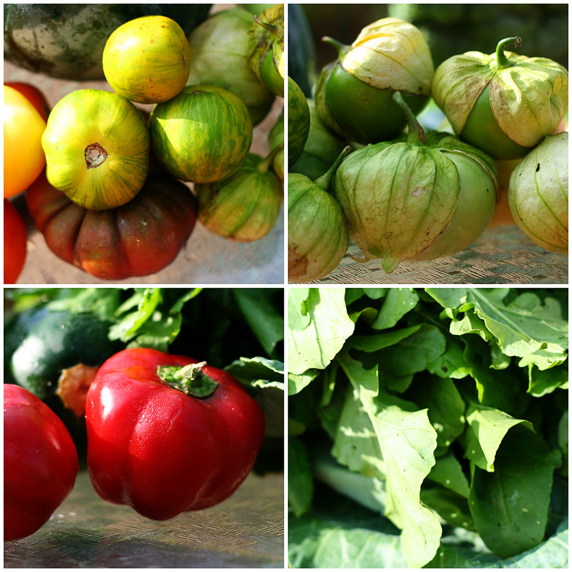 Heriloom Tomatoes, Tomatillos, Pimiento Pepper & Arugula