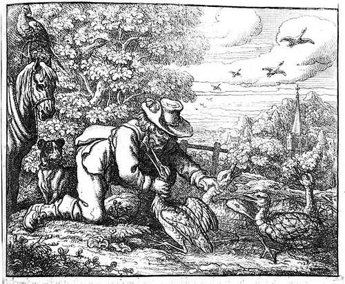 agricola et ciconia
