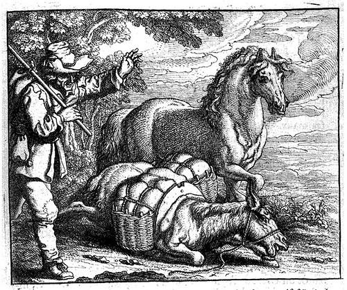 equus et asinus onustus