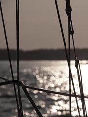 Sailing (Gus NYC) Tags: reflection water lines sailboat sailing sail shelterisland epl1