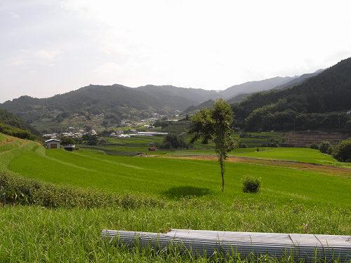 夏の明日香村-06