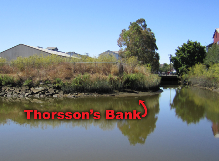 Thorsson's Bank
