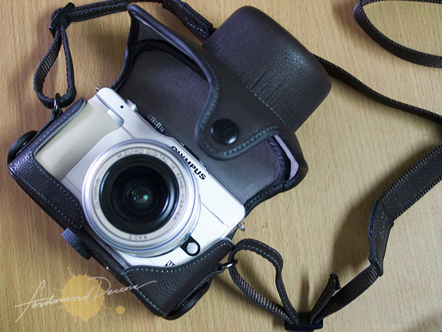 Olympus E-PL1 with Leather Case