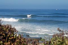 La Jolla,CA (pilz8) Tags: surf waves sandiego socal coastal reef swell lineup pilz8