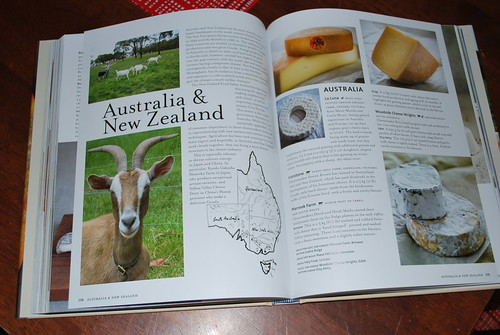 Australian Holy Goat La Luna gets a mention