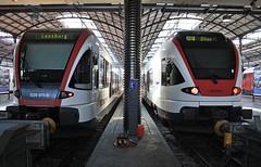 Stadler a confronto (Maurizio Zanella) Tags: station trains sbb svizzera railways stazione lucerna treni ferrovie rabe520 rabe523