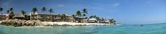 Our Room Our Beach (tubblesnap) Tags: trees sea panorama white beach all eagle sandy palm aruba netherland caribbean antilles inclusive druif tamarijn