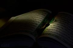 (saeid.goodarzi) Tags: green canon iran muslim ramadan   quran              laylatalqadr  canonefs55250mmf456is  eos1000d