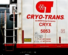 CrimeTwoOner 10/09 (mightyquinninwky) Tags: railroad train graffiti streak character tag graf tracks ct railway tags tagged railcar 09 rails graff graphiti 2009 freight reefer 1009 trainart rollingstock paintedtrain fr8 railart spraypaintart cryx moniker freightcar movingart paintedsteel cryotrans coldcar freightart crime21 paintedreefer reeferart paintedrailcar taggedreefer paintedfreight taggedrailcar taggedfreight coldfreight cr1metwooner crimetwooner 11223344556677 carfireonflickr charactersformyspacestation