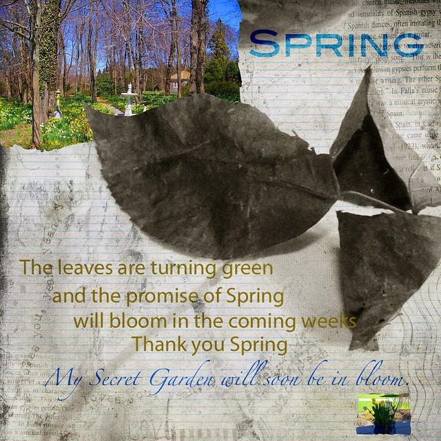 spring and kimklassen background