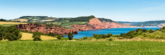 Red cliff panorama (Keith in Exeter) Tags: red cliff sandstone panorama coast landscape fields clover trees sea bay devon england uk outdoor hill high peak