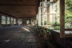 back to nature (blende einspunktacht) Tags: hdr lostplaces verlasseneorte decay ilovedecay window backtonature canon tokina urbex urbanexploration