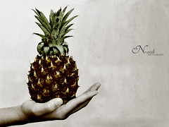 Pineapple (ň σ я α н ♥) Tags: fruit photography pineapple norah mohammad اناناس
