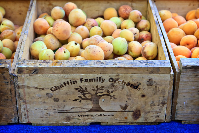 Chaffin Family Orchards