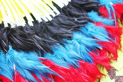 Multi-Colored Head Dress Feathers