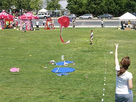 14_kite_over_Open_Field