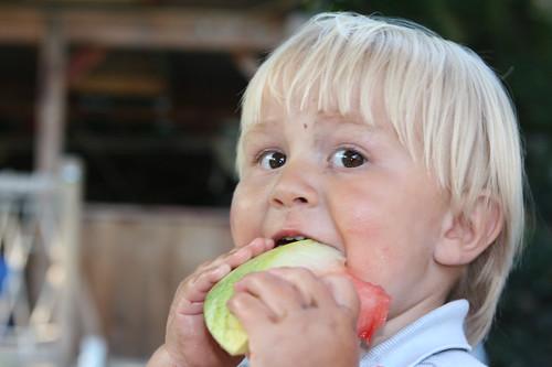 Thomas v. watermelon