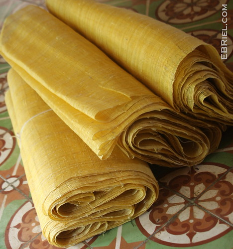 Raw Vietnamese Silk