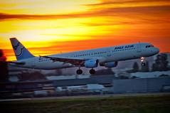 [フリー画像] 乗り物, 航空機, 旅客機, 夕日・夕焼け・日没, 201007102300