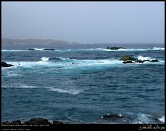 Lebs, Mirbat, Dhofar (Shanfari.net) Tags: seascape beach nature lumix fishing raw natural panasonic oman fz zufar  rw2 salalah sultanate dhofar  khareef   mirbat     dufar       dhufar governorate dofar fz38 marbat  fz35 dmcfz35