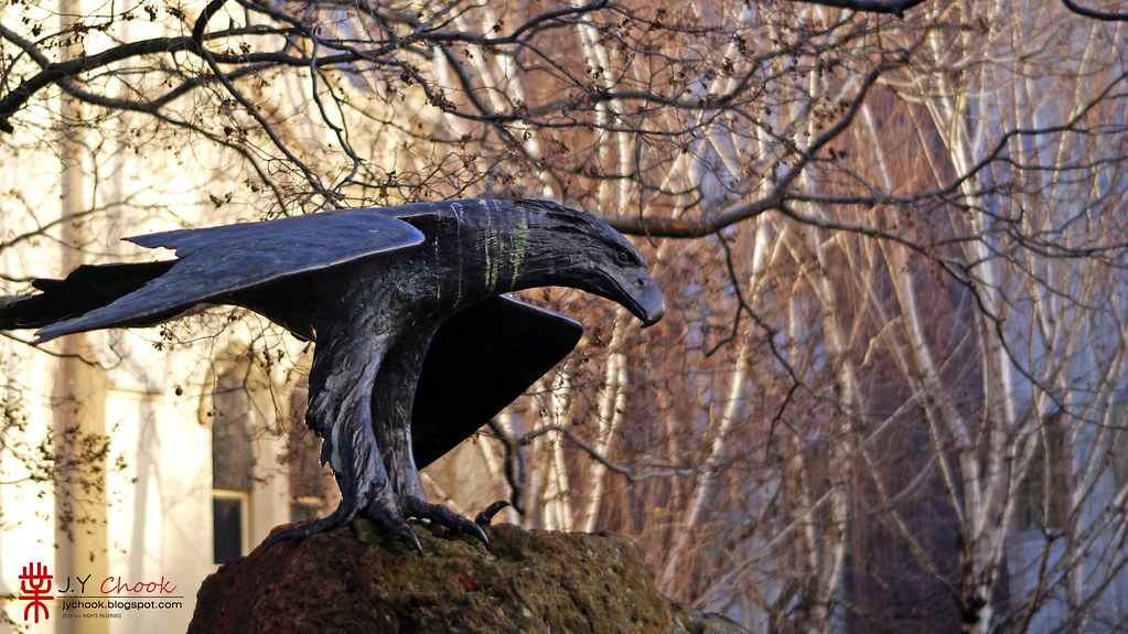 Sculpture Eagle