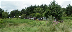 Carbeth Huts Summer (Ben.Allison36) Tags: uk holiday green landscape scotland bill timber glasgow barns huts finepix strike shack rent graham protests mcqueen stirlingshire clydebank carbeth blanefield hutters exserviceman s8100fd hutseviction
