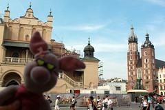 Ferkel vor den Tuchhallen in Krakau