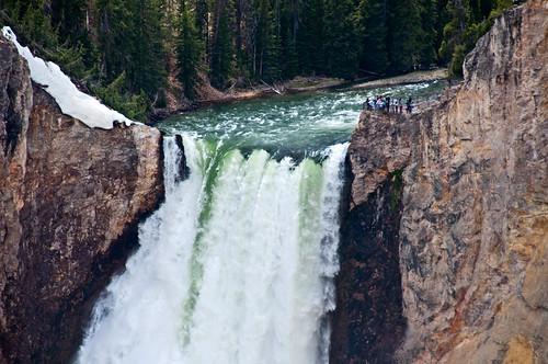 Yellowstone 37