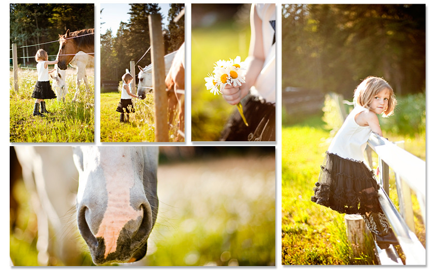 Blog7-at the farm