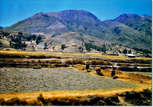 Viaje en tren desde Juliaca hasta Cuzco Perú