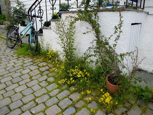 Street Scene - Stavanger, Norway