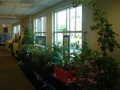 garden sale09 (mtlebanonlibrary) Tags: library libraryprogram mtlebanonlibrary gardensale