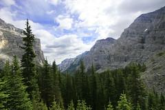 cliff vista (Veronika Lake) Tags: kananaskis hiking alberta rockymountains ribbonfalls canadianrockies