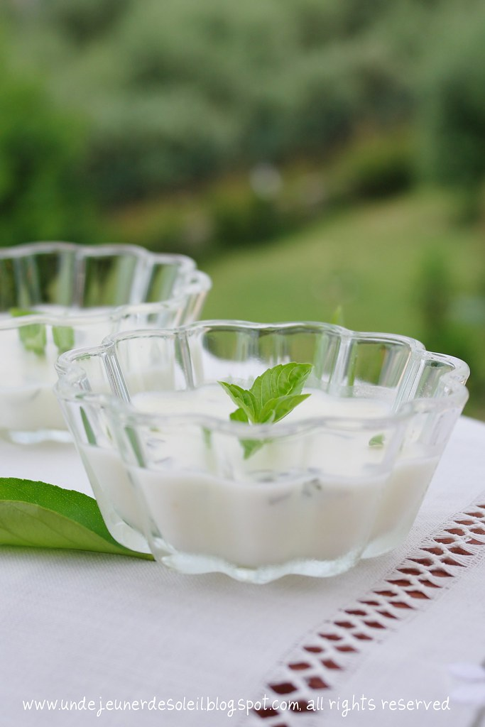 Lemon posset with basil