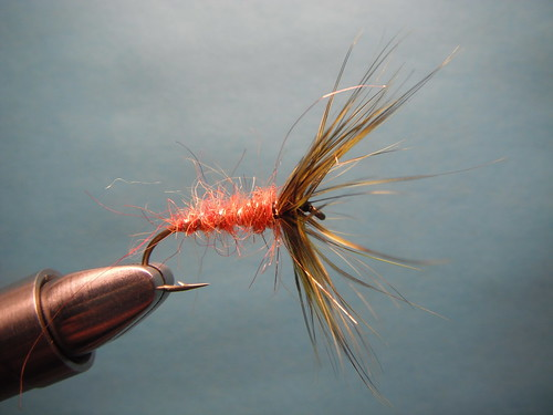 Reverse spider cutthroat fly pattern