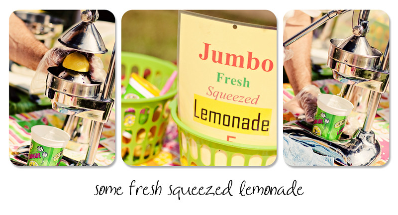 Lemonade Collage BLOG WM2