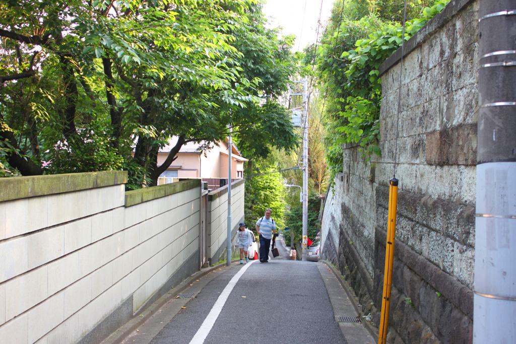 Yanesen area (25)