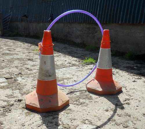 Makeshift Agility Hoop